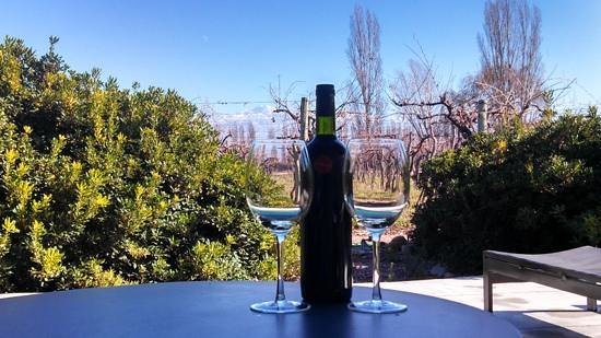 Cavas Wine Lodge: view from the outdoor varendah