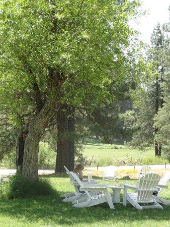 Big Trees Lodge : Wawona Hotel