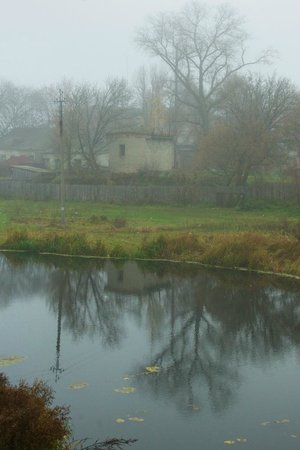 Kozelets: The Oster River in the fog