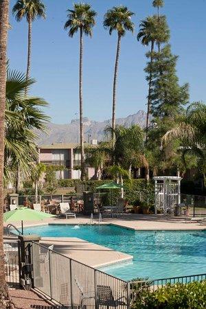 Arizona Riverpark Inn : Ariel View
