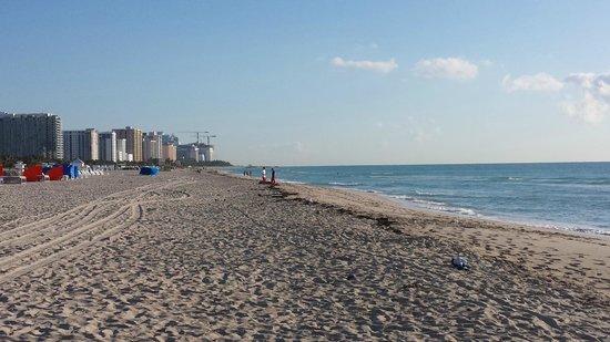 Royal Palm South Beach Miami, A Tribute Portfolio Resort: Spiaggia