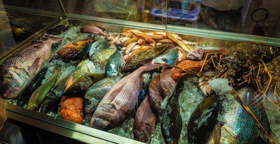 Sunset Ammoudi Taverna: The fresh fish case