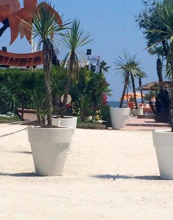 Hotel Miami Beach: Accesso diretto Papeete