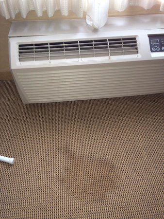 Sheraton Bucks County Hotel: At the air conditioner