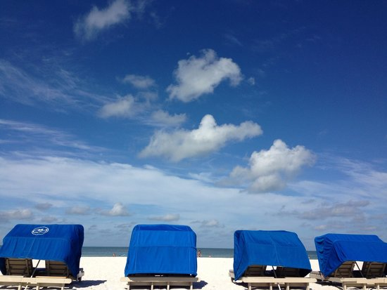 Guy Harvey Outpost, a TradeWinds Beach Resort : Relaxing views from my cabana