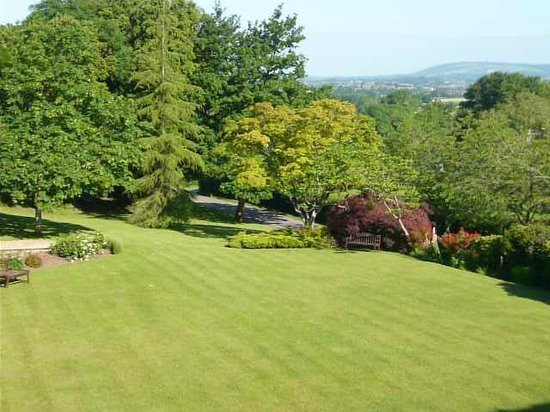 The Mount Somerset Hotel: View from the room
