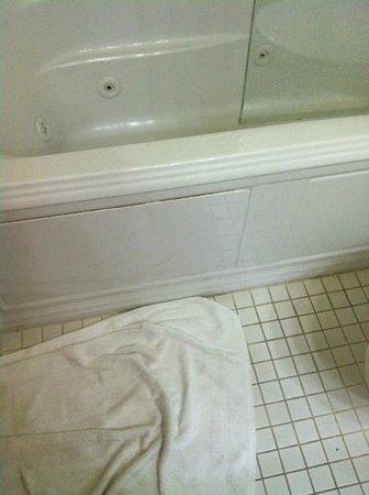 Charleston Harbor Resort & Marina : Rust stain outside of tub