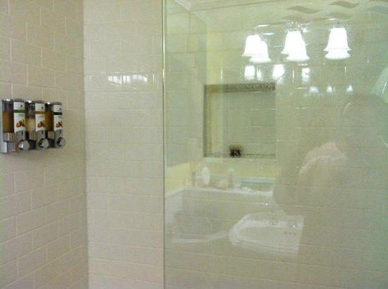 Charleston Harbor Resort & Marina : Bathroom Dispensers