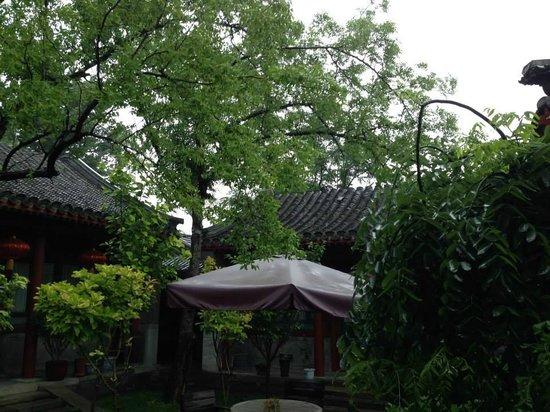 Beijing Sihe Courtyard Hotel : Courtyard on a rainy morning