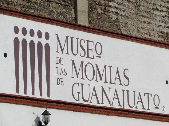 Museo de las Momias de Guanajuato: Entrada do Museu