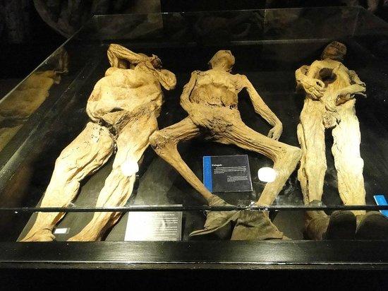 Museo de las Momias de Guanajuato: 3 histórias!