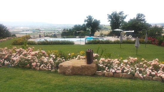 Agriturismo Il Melograno: la piscina