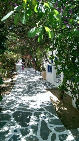Acrogiali Beach Hotel: hotel