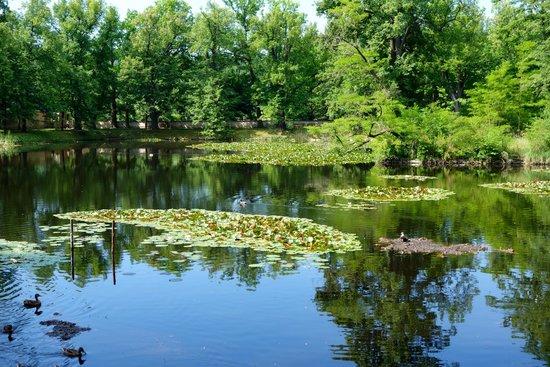 Cesky Krumlov Castle: The castle garden pond.