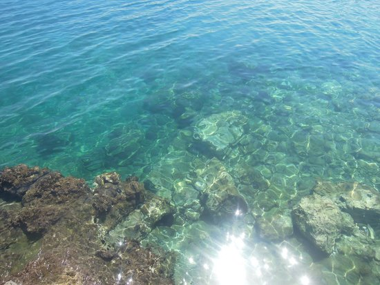 Alexander Beach Hotel & Village : Море У отеля