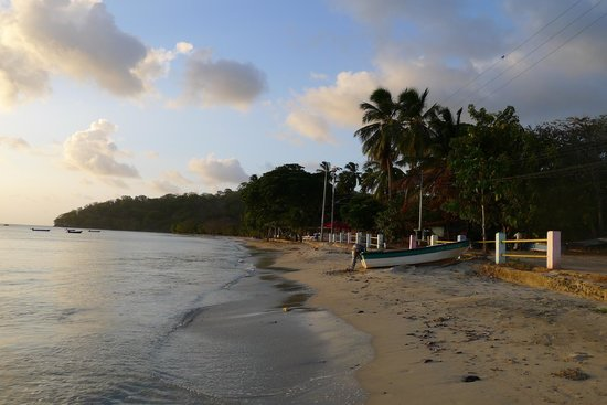 Miss Mary Hotel - Decameron : View of the beach in front of hotel at sunset
