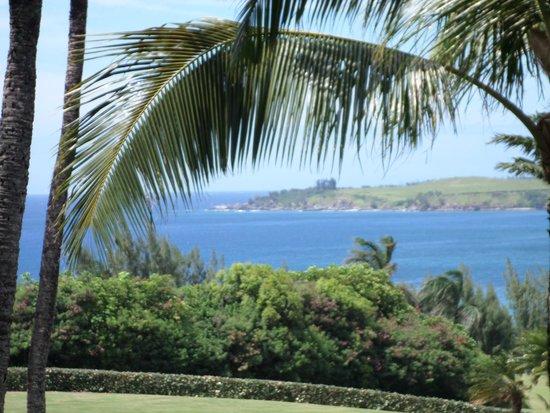 The Ritz-Carlton, Kapalua: Ocean View