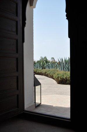 Riad Couleur Sable : Le jardin de cactées vu de l'entrée
