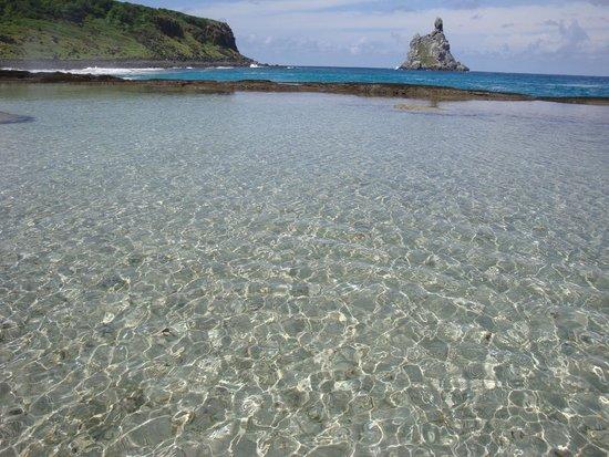 Baia do Sancho: Noronha - Piscina do Atalaia berço dos tubarõezinhos