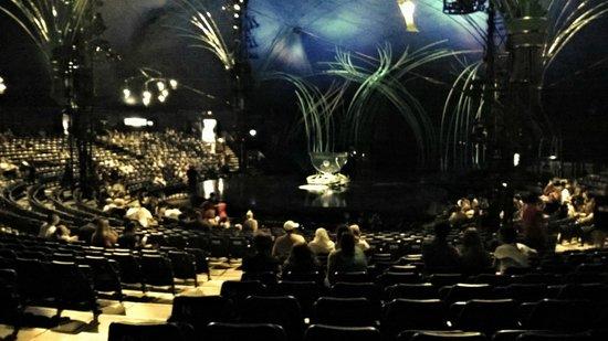 The Beautiful Tent Picture Of Amaluna Cirque Du Soleil