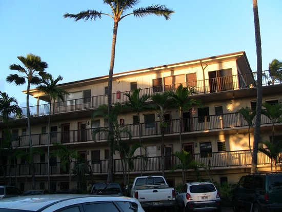 Prince Kuhio Condos : 401 and 402 are the roof top condos.  102 is on the ground floor