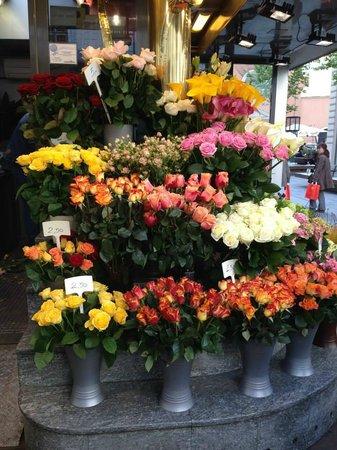 Historisches Zentrum von Wien: Flores como boutique