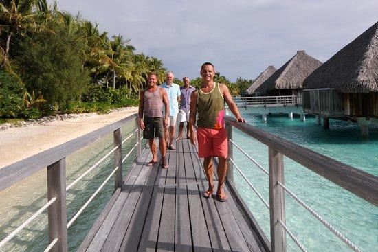 Bora Bora Photo Lagoon : Friends