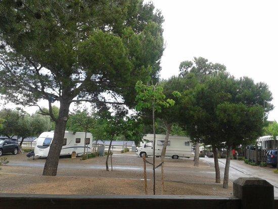 Camping La Masia: vista desde bungalow