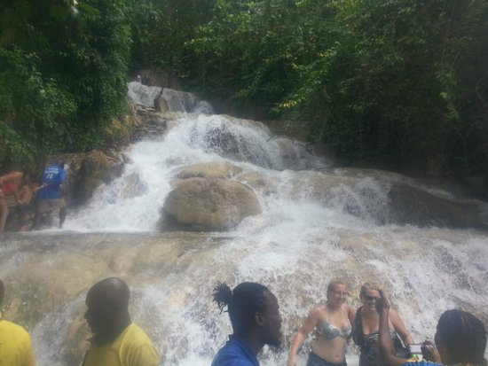 Dunn's River Falls and Park : Dunn's River Fall