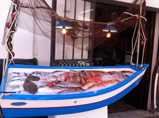 Bar La Esquinita: Pescado fresco