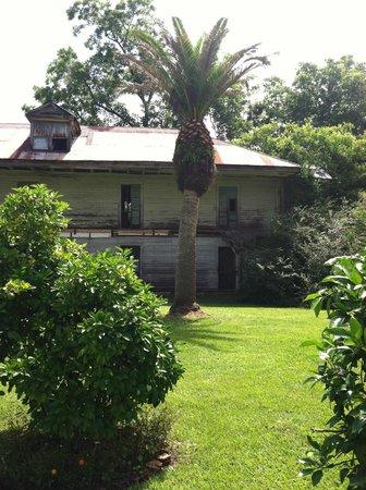 Laura Plantation: Louisiana's Creole Heritage Site: Retirement  villa