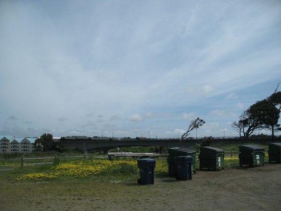 Harbor RV Park: Dumpsters & fish cleaning - Harbor RV