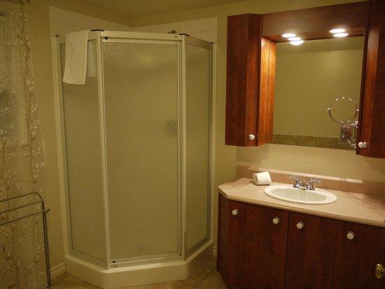 Domaine des Montagnais: Salle de bain