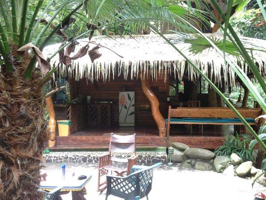 Congo Bongo Boutique Guest Houses: Palm house