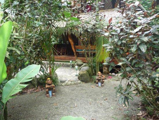 Congo Bongo Boutique Guest Houses: Entrance to Palm house