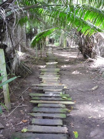 Congo Bongo Ecolodges Costa Rica : Boardwalk to beach