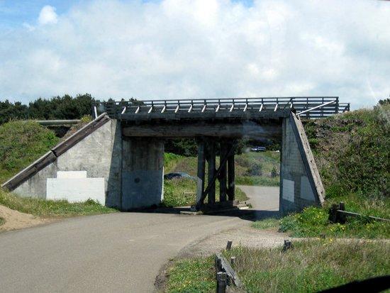 MacKerricher State Park: MacKerricher SP - old RR underpass