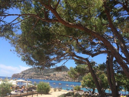 Olimarotel Gran Camp de Mar: Bay to the right..