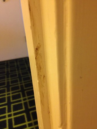 Red Roof Inn Arcata: Feces on the door frame