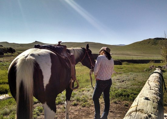 Badger Creek Ranch : Getting acquainted