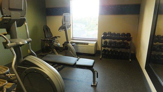 Hampton Inn Saint Robert/Fort Leonard Wood: Fitness 5