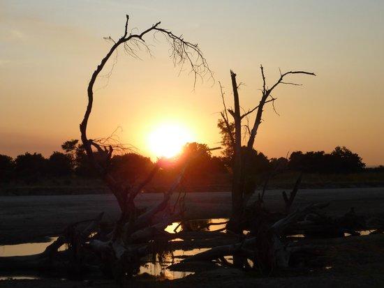 Luwi Bush Camp - Norman Carr Safaris: Sundowners