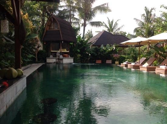 Sri Phala Resort & Villa: piscine de l'hotel