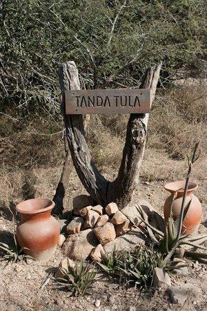 Tanda Tula Safari Camp : Tanda Tula