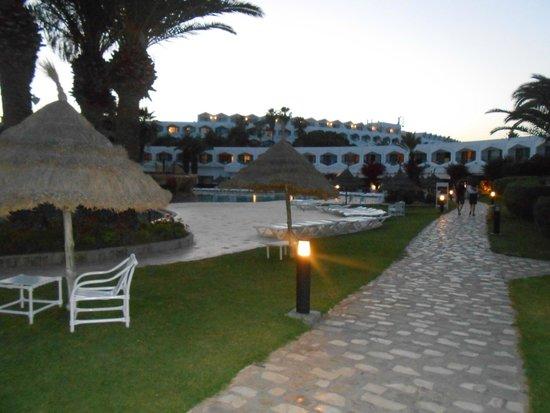 SENTIDO Phenicia: Main pool area and view of hotel