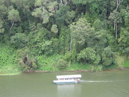 Down Under Tours - Day Tours : Barron River from the Skyrail