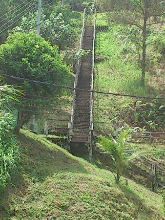 Saloma's Villagestay: Village
