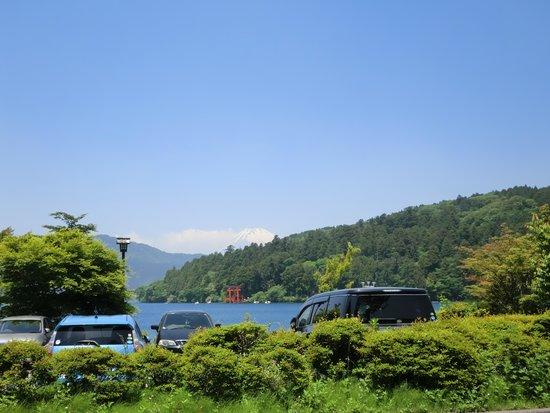 Hakone Shrine / Kuzuryu Shrine Singu: 少し遠くからですが、鳥居とグリ-ンです!