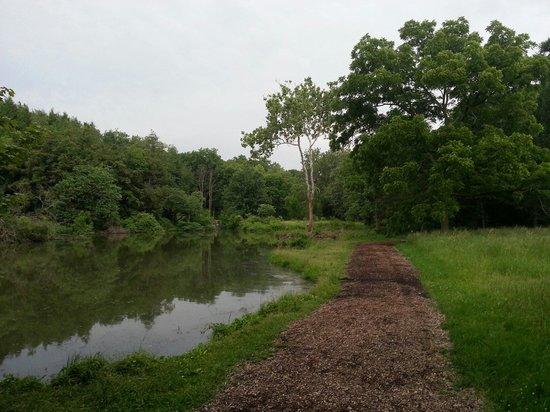 Morton Arboretum: Picture of lake with trail