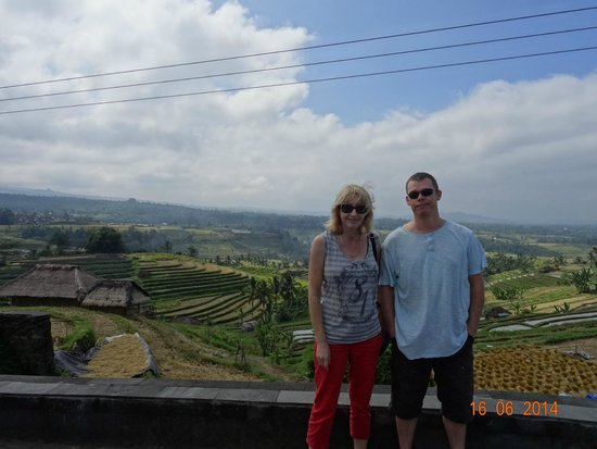 Bali Traditional Tours - Day Tours: Rice fields